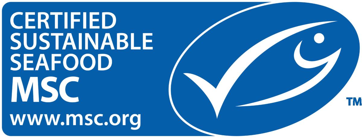 MSC Banner Logo
